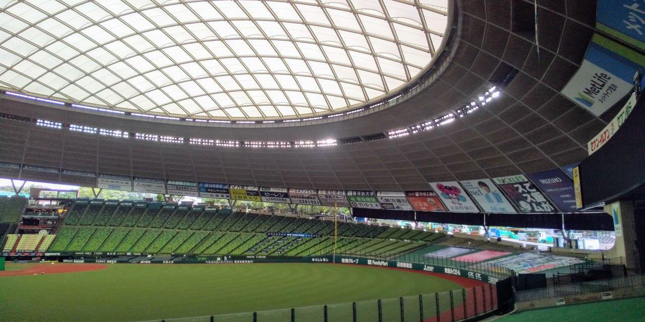 の 埼玉 県 大会 野球 夏 高校